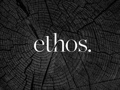 Ethos Property Logo Design brand identity property branding custom logo design wordmarque monogram ligature logo design