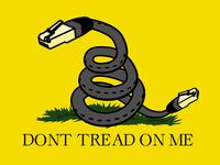 Gadsden Flag / Net Neutrality