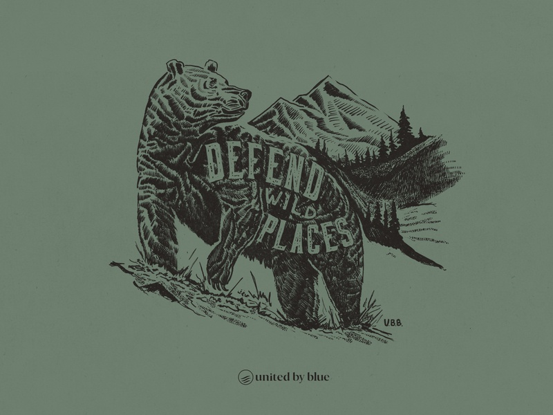 United By Blue Defend Wild Places bear illustration bear nature illustration national park hand lettering outdoors illustraion