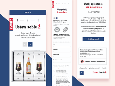 Set up your Ż form whitespace mobile ux ui lottery competition minimal website web