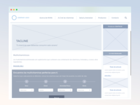 Wireframe for Centrum Mexico