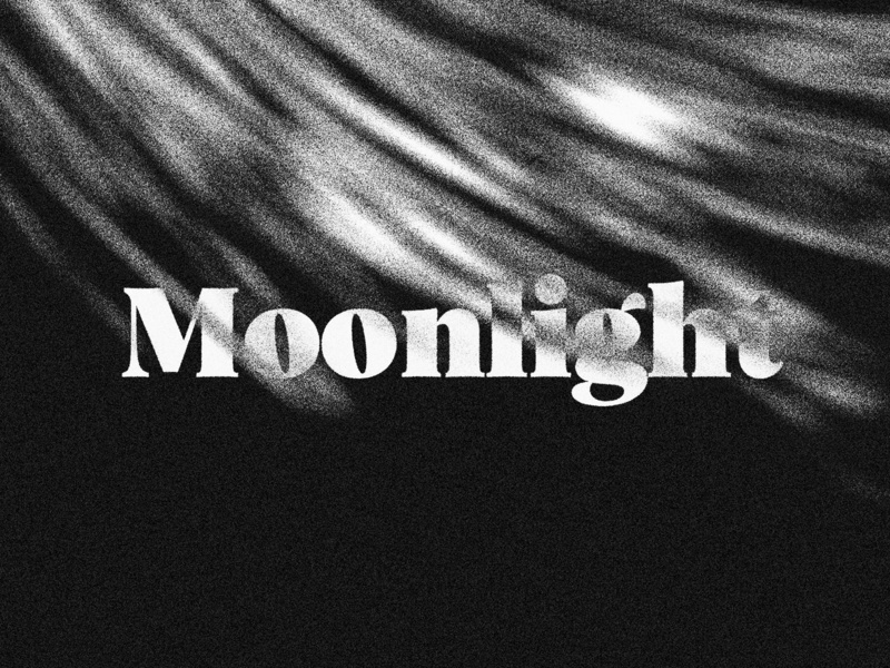 Moonlight typography art serif light black and white branding logo experiment noise abstract font
