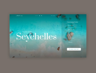 Seychelles tours form design travel nature ux design flat ui design ui design website design minimal website concept