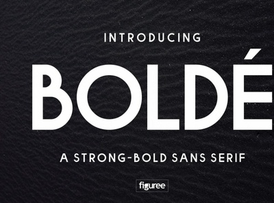 Bolde Font Family
