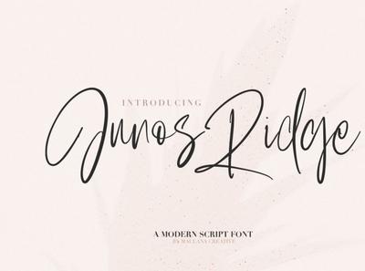 Junos Ridge - Handwritten Brush Font scriptfont handwrittenfont font typography