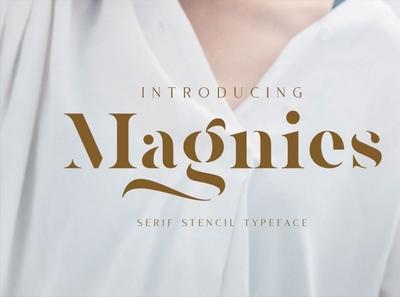 Magnies - Minimal Serif digitalart seriffont font typography