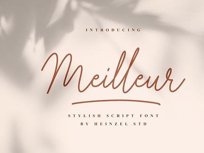Meilleur scriptfont handwrittenfont font typography