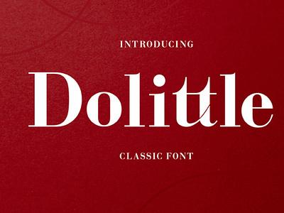 Dolettle Serif Font digitalart typography font seriffont