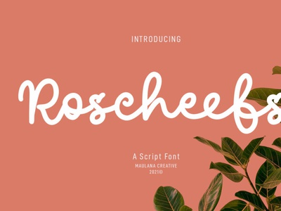Roscheefs Script Font typeface handwrittenfont scriptfont typography