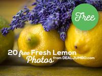 20 Free Lemon Photos