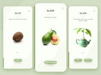 Grow your own avocado
