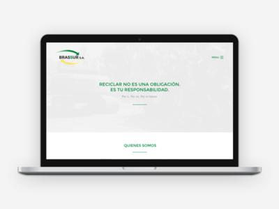 Brassur S.A. — Website