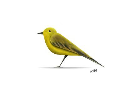 Yellow Wagtail vector fly nature bird wagtail yellow