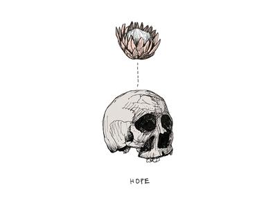 Hope Skull inspire ink pen sketch bones flower hope protea skull