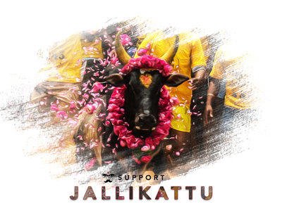 Jallikattu Designs Themes Templates And Downloadable Graphic Elements On Dribbble Our database contains over 16 million of free png images. jallikattu designs themes templates