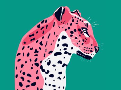 Leopard illustartion
