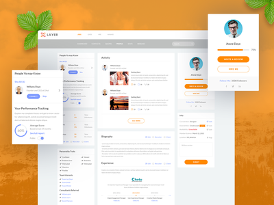 Consultant Profile Page of LAYER marcket place home software management profile home page hire business landing business solution consultant agency team software