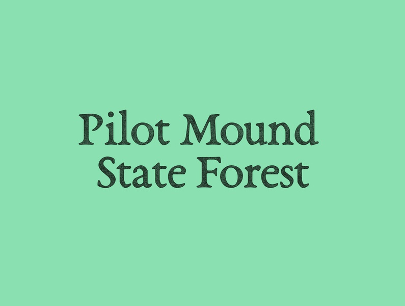Pilot Mound State Forest opentypefoundry typeface challenge forest logotype branding design typography logo