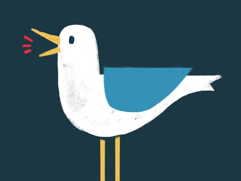 Loud Birds seagull texture design poster gig bird photoshop illustration
