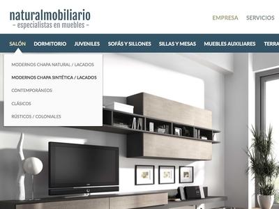 Furniture rejected website web design ui web rejected furniture