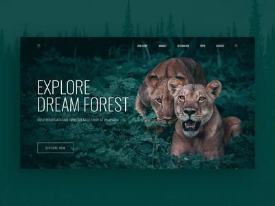 Forest adventure landing page ui design