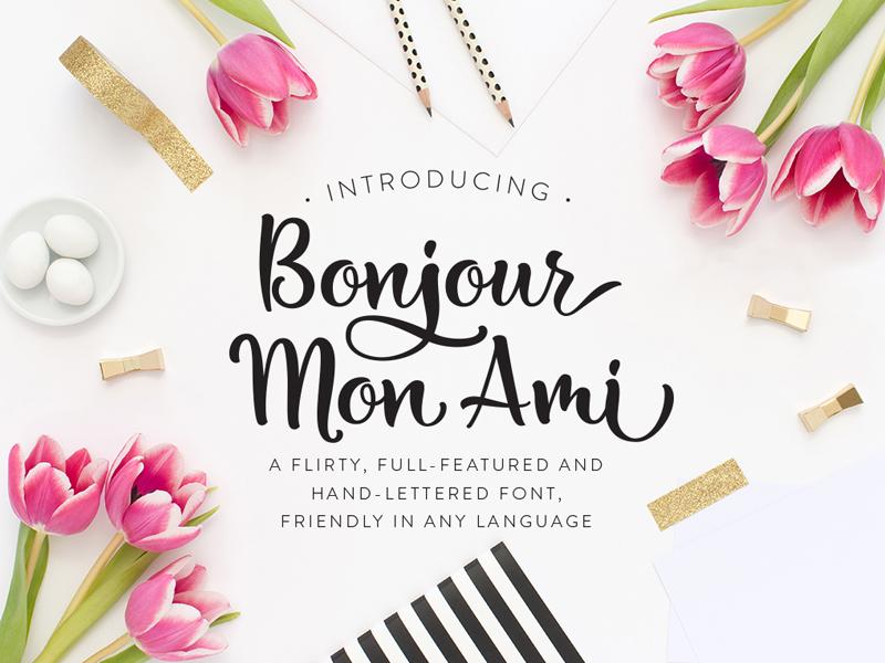 Bonjour Mon Ami By Laura Bolter Dribbble Dribbble