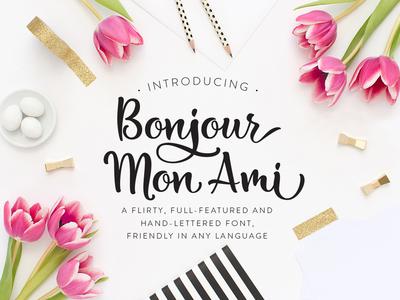 Bonjour Mon Ami brush lettering font design brush font script font typography type typeface handlettering font