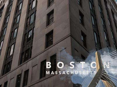 Boston Geofilter