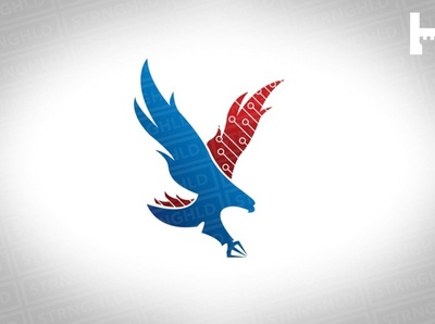 American Eagle Vector Logo Template tech logo tech eagle logo bird logo branding logodesign usa eagle logo bird