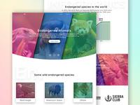 Endangered Animals Landing Page