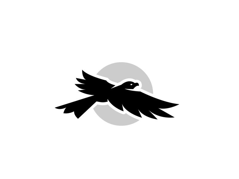 Above bird illustration hawk logo hawk bird logo bird