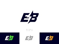 E- Bike tours lightning logo lighting e-bike logo bycicle logo