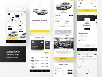 Tesla -  Car Sharing App car sharing credit card product card model s ux ui payments car tesla rental