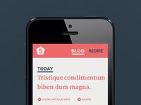 Form5 mobileblog fullpixel