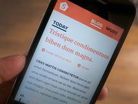 Form5 Website - Mobile Blog