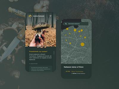 Forester - app concept autumn app boletus social forest mushrooms