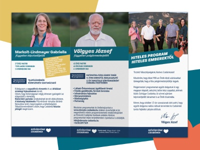 Trifold design for political party print designer branding print design trifold brochure trifold party politics