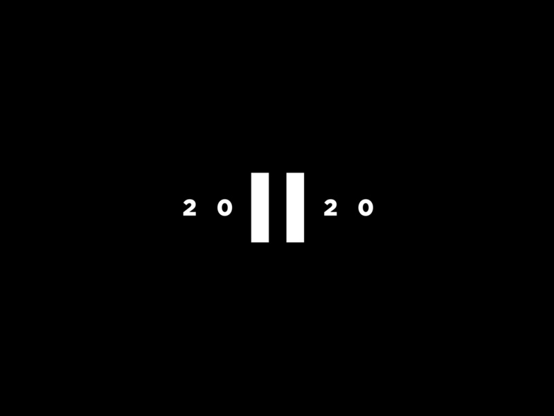 The Great Pause 2020