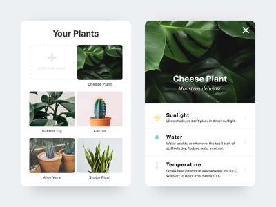 Plant Card add new ux ui icons mobile minimal interface app plants plant clean card