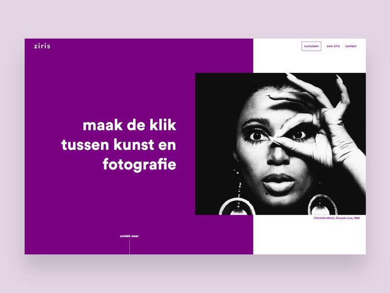 Ziris development website visual design ux