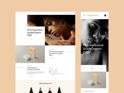 APTH Lab lookbook brand web design ux design web ux ui design inspiration ui design