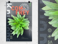 Comfrey Poster Final