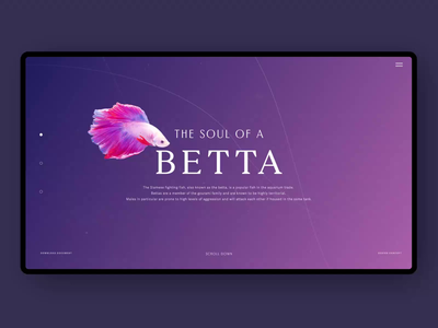 Betta Fish video ui design uxui interface interaction animation motion typography art typography product aquarius fishes aquarium fish website visual layout concept design ui