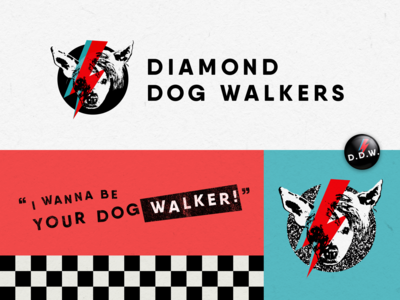Diamond Dog Walkers Branding