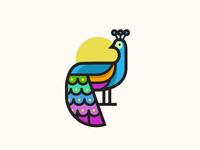 Peacock v1