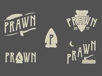 Prawn Logo / Illustration set