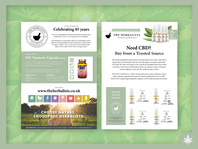 The Herbalists CBD Flyer a5 flyer health natural medicine herbalist cannabis flyer cbd design