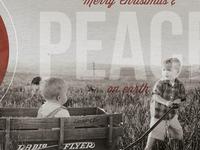 Christmas + Peace