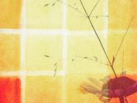 Yellow Tile 🌼🟨
