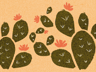 cactus closeup summer cactuses western flower prickly pear west desert cactus